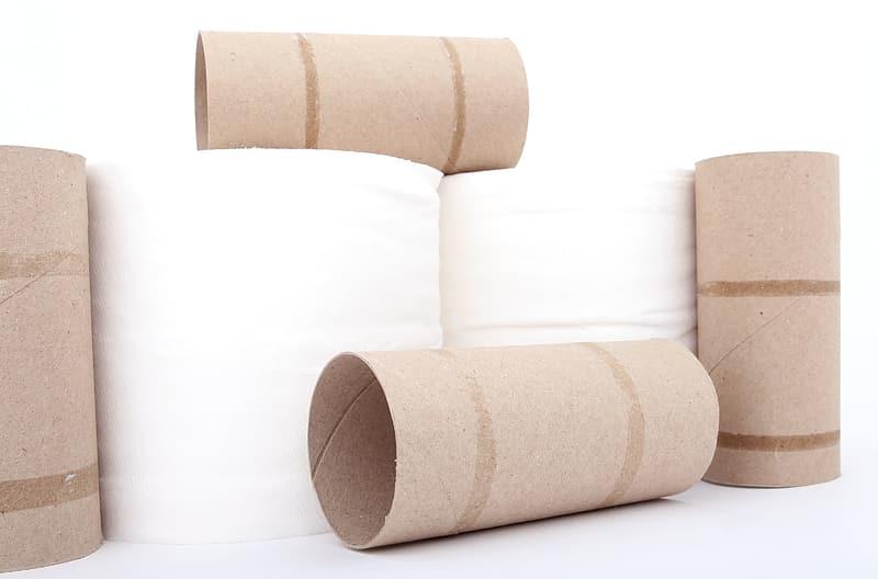 Coronavirus Toilet Roll